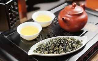 Польза и вред молочного чая Улун
