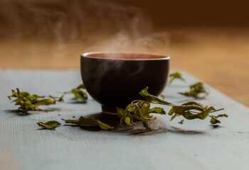 Зеленый чай «Белая обезьяна». Чай «Белая обезьяна»: приготовление, особенности и полезные свойства