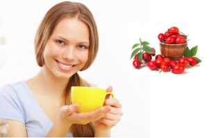 Чай из шиповника: польза и вред. Как заваривать чай с шиповником?