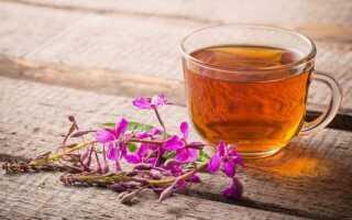 Как употреблять иван-чай с пользой для здоровья