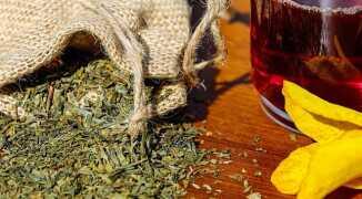 В чем польза алтайского чая