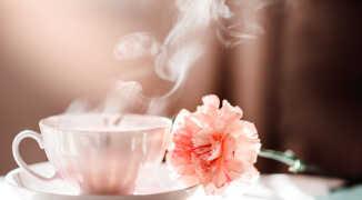 Чай из гвоздики — как правильно заварить, рецепты чаев из гвоздики