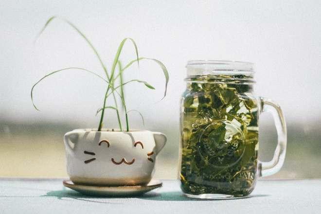 Банка с листьями зеленого чая