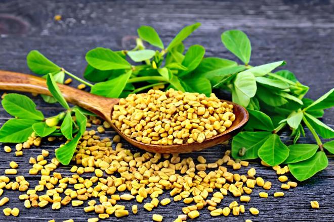 Полезные семена хельбы