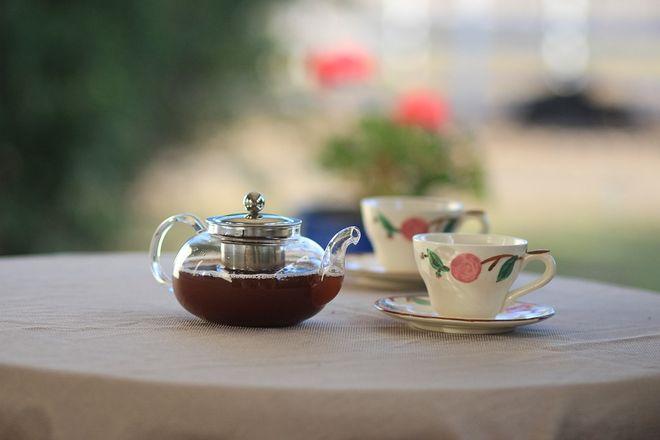 Две чашки чая и чайник